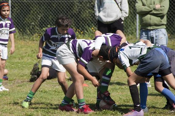 C. Rugby Málaga. Escuela. Concentración Marbella. 270413-  1