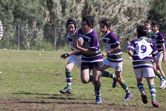 C. Rugby Málaga. Escuela. Concentración Marbella. 270413-  2