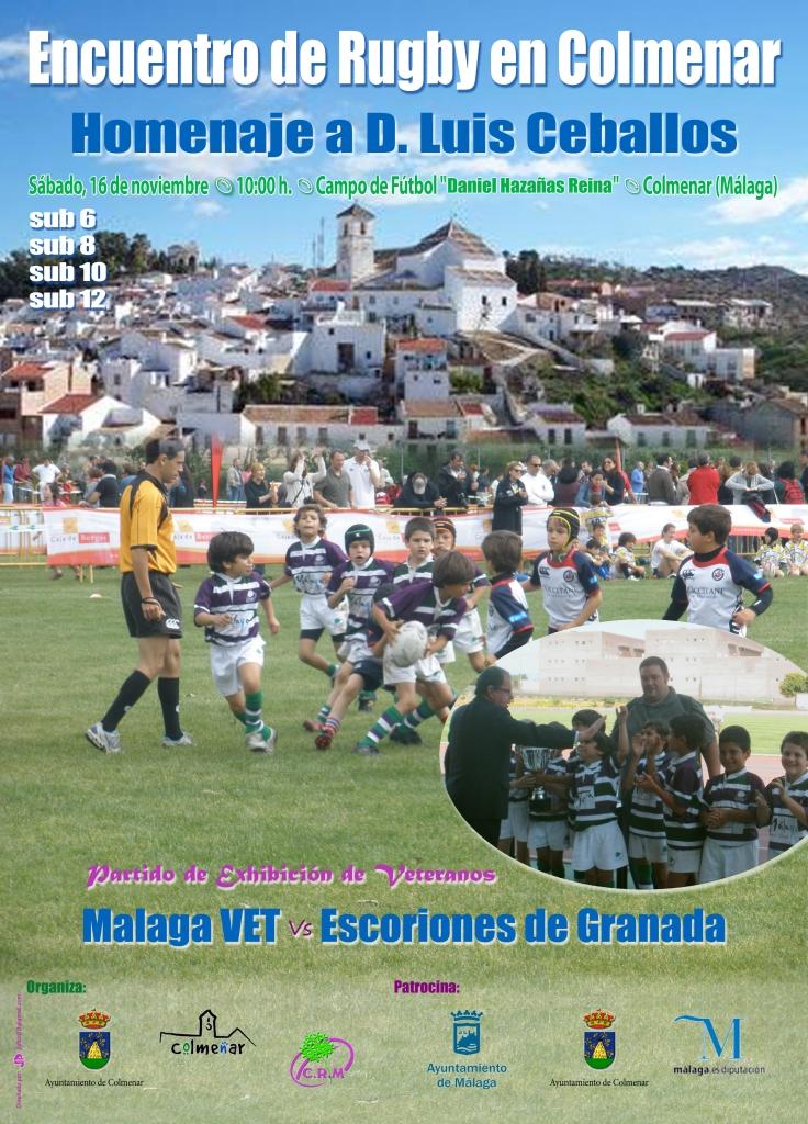 Concentración Rugby. Colmenar 2013. Cartel